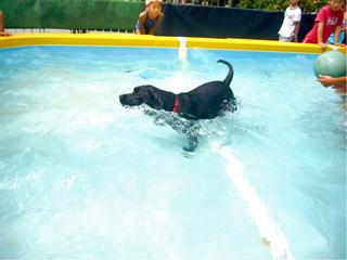 泳ぐユジン
